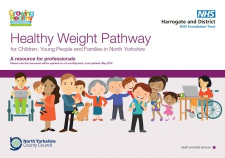 Healthy weight pathway May 2019_0.JPG